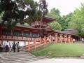Nara : Kasugataisha