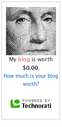 My blog is worth... 0$